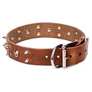 NEW Trendy Dog Collar with Skulls and Spikes, 1.6 in Wide