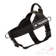 Front-Clip No-Pull Dog Harness with Handle and Sign Patches