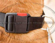 Nylon Dog Collar for Dog De Bordeaux | Strong Large Dog Collar