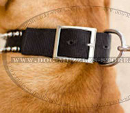 Nylon Dog Collars for Dogue De Bordeaux