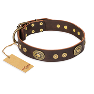 New Leather Dog Collar with Bronze-Like Studs 'One-of-a-Kind'