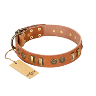 Natural Beauty FDT Artisan Leather Dog Collar Tan
