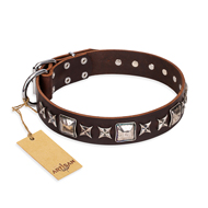 Great Brown Dog Collar FDT Artisan 'Perfect Impression'