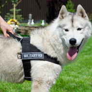 Non Pull Dog Harness for Siberian Husky Walking and Training