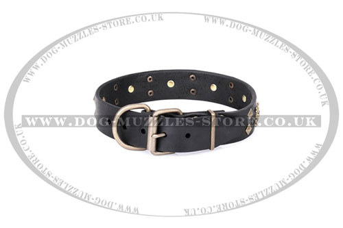 buy Skull bones dog collar FDT Artisan UK
