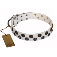Best White Studded Dog Collar FDT Artisan 'Snowflake'