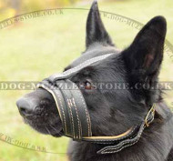 Padded Dog Muzzle for German Shepherd | Leather Dog Muzzle GSD