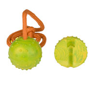 Solid Rubber Dog Ball | Dog Toy on Rope