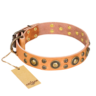 New Leather Dog Collar FDT Artisan 'Sophisticated Glamour'