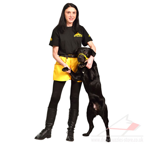 dog training skirt for treats