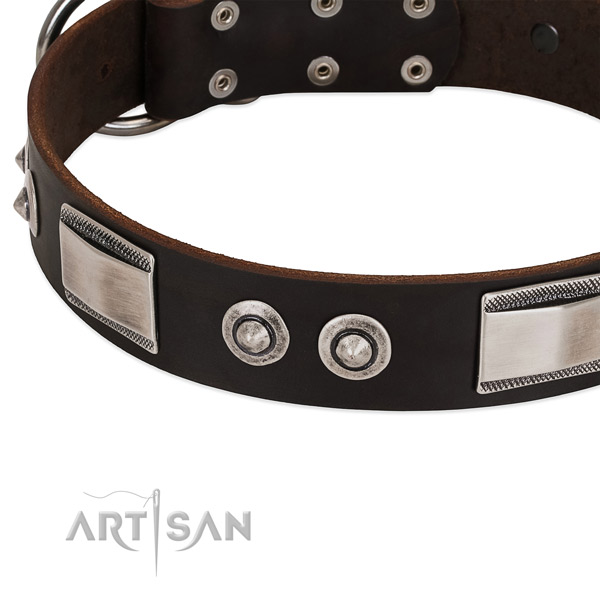 buy Artisan chocolate brown dog collar