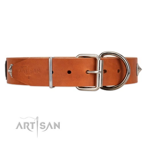 leather dog collar with d ring FDT Artisan