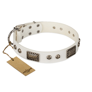 Exclusive White Dog Collar FDT Artisan 'Terrific Beauty'