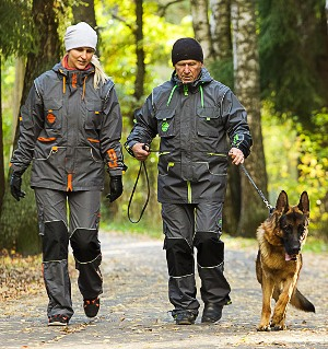 professional dog training apparel for sale