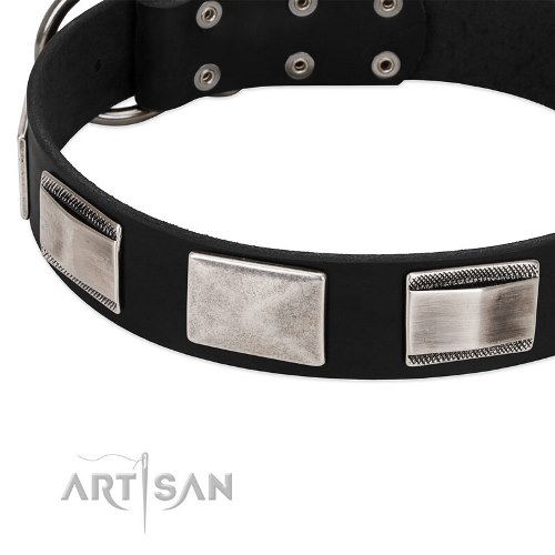 buy thick black leather dog collar Artisan online