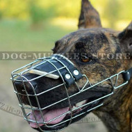 Wire Dog Muzzle for Great Dane | Great Dane Muzzles UK