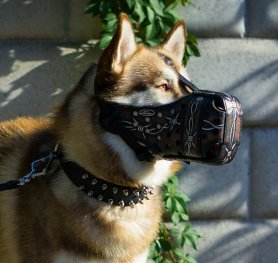 The types of dog muzzles